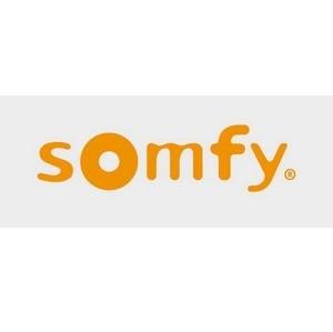 Компания «Зомфи» (Франция)